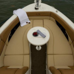 Sea Ray 300 SLX Speedboat on Charter in Mumbai
